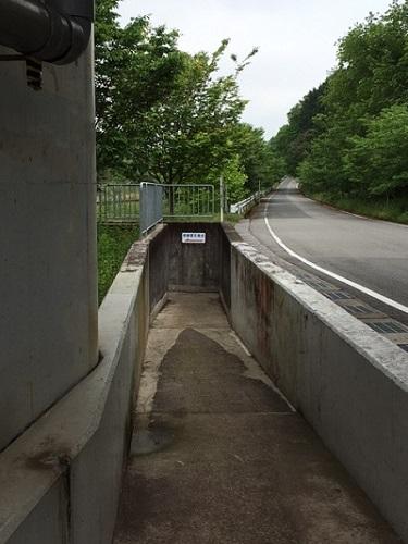 西脇市のふれあいトンネルにつながる道の写真