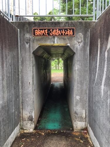 日本のへそふれあいトンネルの写真