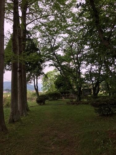 経緯度交差点の周囲の木々の写真