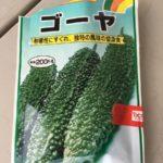 家庭菜園企画 夏バテの前にゴーヤを収穫できるのか