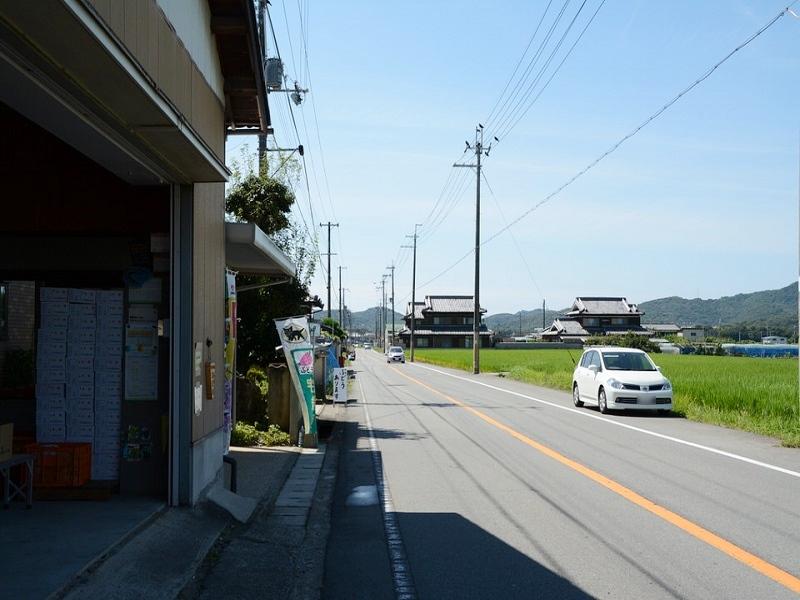 神戸ぶどう園の前の道