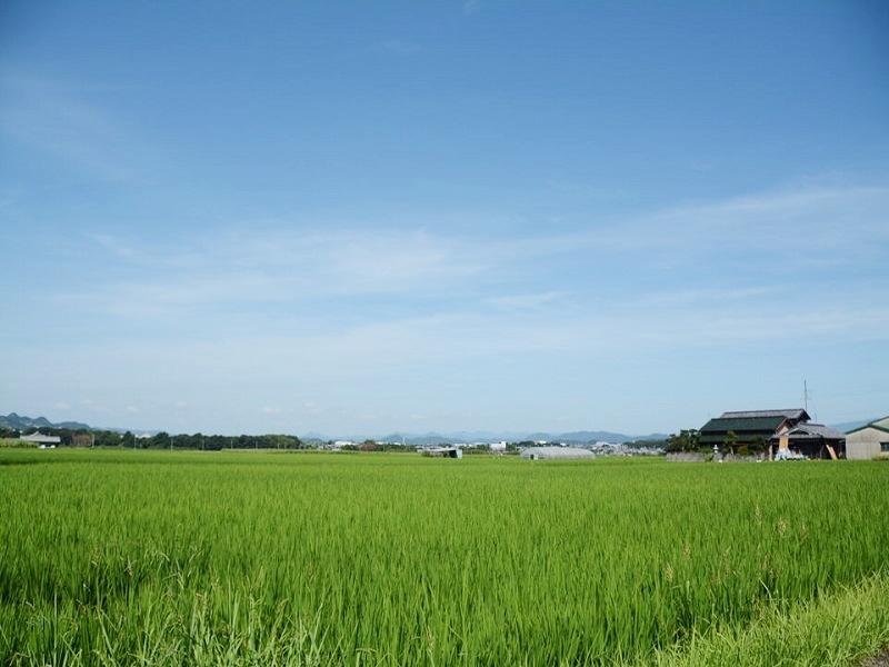 神戸ぶどう園の前