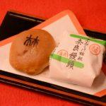 林浄因にちなんだ奈良饅頭は手づくり感のある素朴な味わい