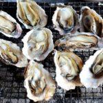 相生産の牡蠣を焼きながら