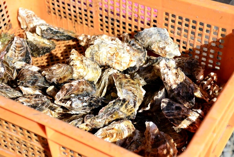 大豊の焼き牡蠣