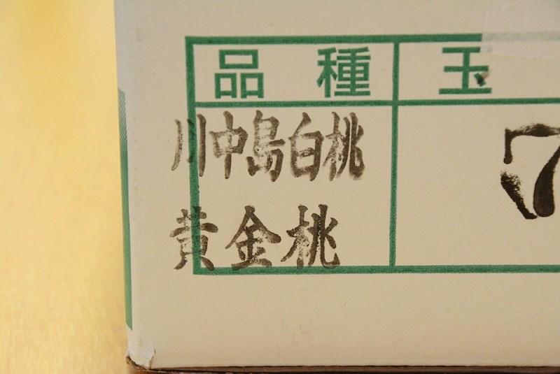 斎藤果樹園 品種名