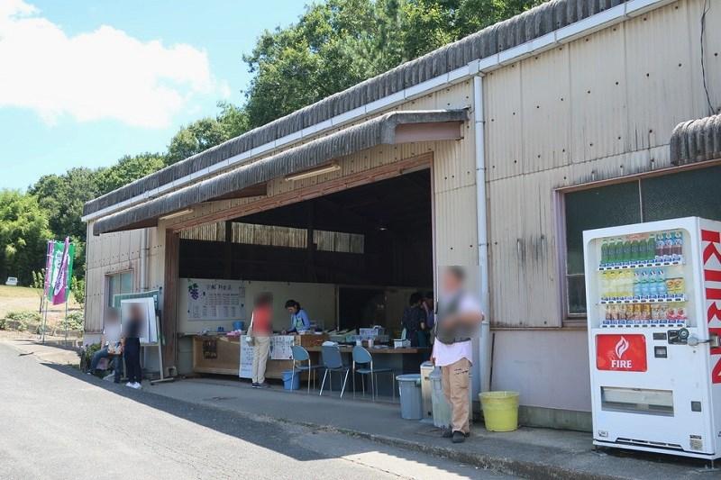 三木平井山観光ぶどう園 販売所