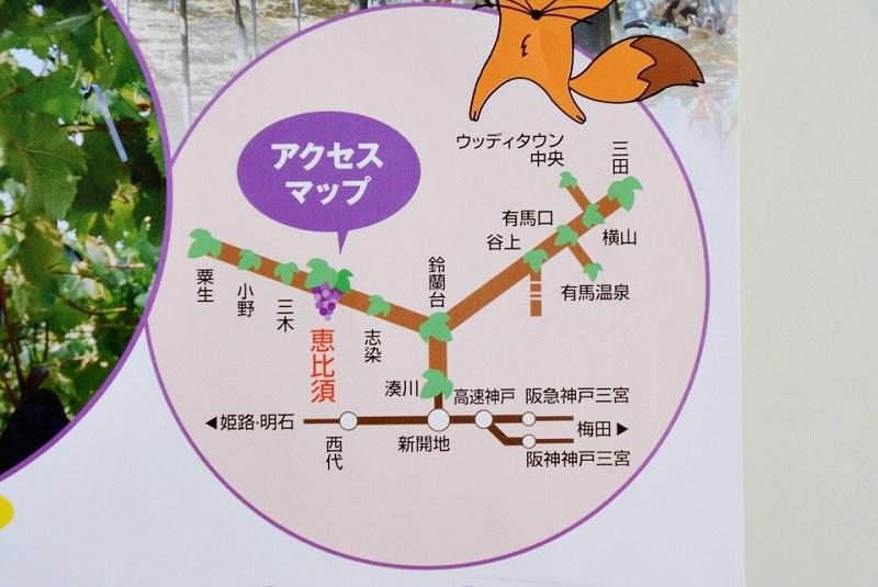 ぶどう狩りきっぷが適用される駅