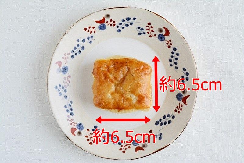 エキソンパイの大きさ
