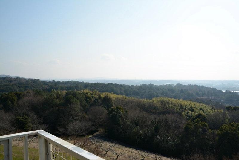 橋の展望台の南東の風景