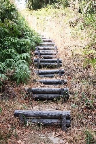 黒岩山への道(階段)