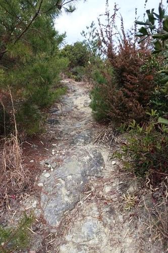 黒岩山への道