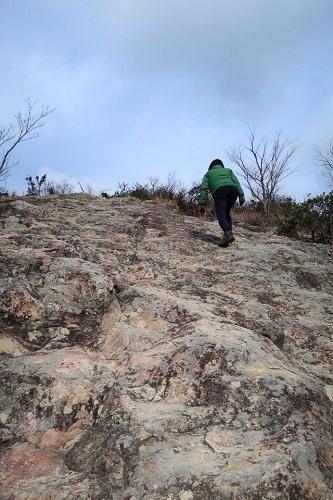 小高御位山から高御位山への道