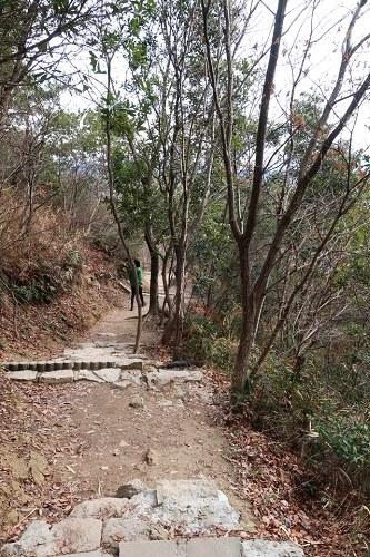 成井登山口から高御位山への道