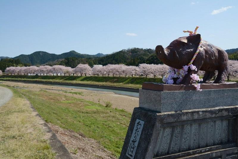 渡瀬橋にある桜の首輪をしたイノシシ像
