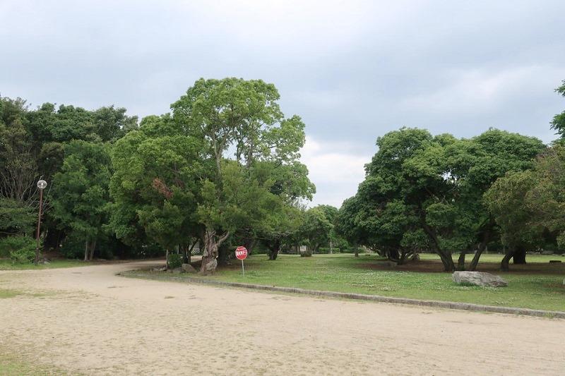 明石城の頂上にある公園