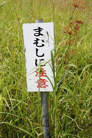 砥峰高原の「まむしに注意」と書かれた看板