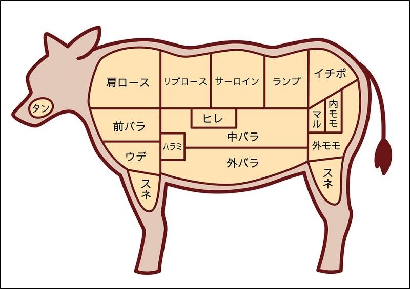 牛肉の部位を表したイラスト