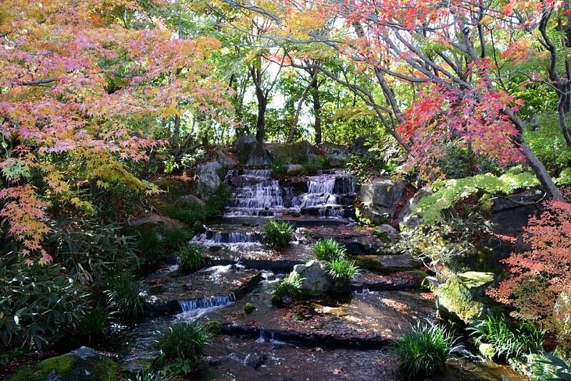 好古園の渡り廊下から見える滝