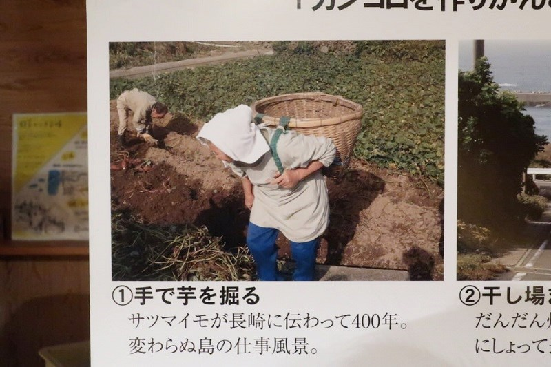お婆さんが芋を入れた籠を背負っている様子