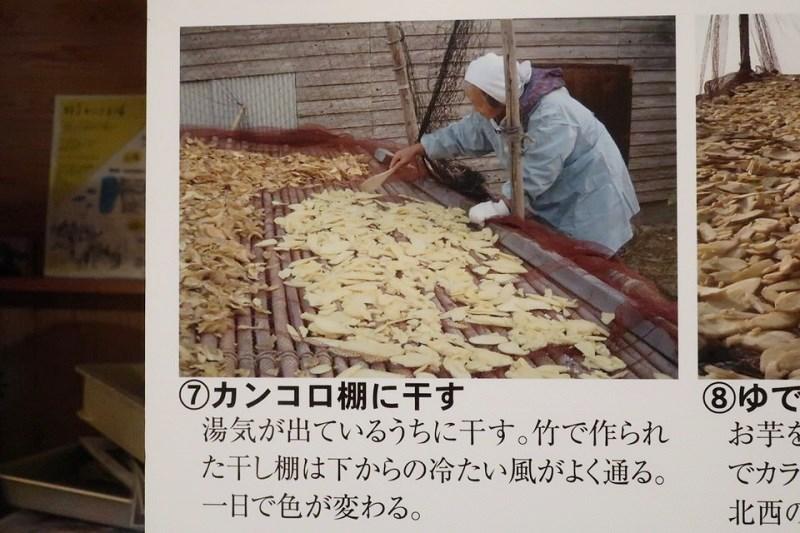 お婆さんがスライスして茹でたさつま芋をカンコロ棚に干している様子
