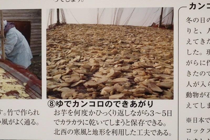 カンコロ棚に干されているゆでカンコロ